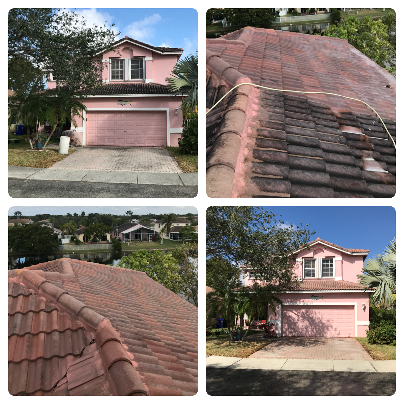 Non Pressure Roof Cleaning
